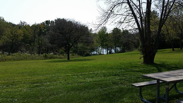 Park in Indiana