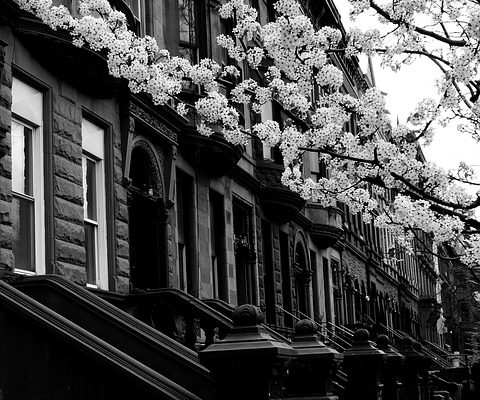 black and white picture of harlem to consider when moving to harlem