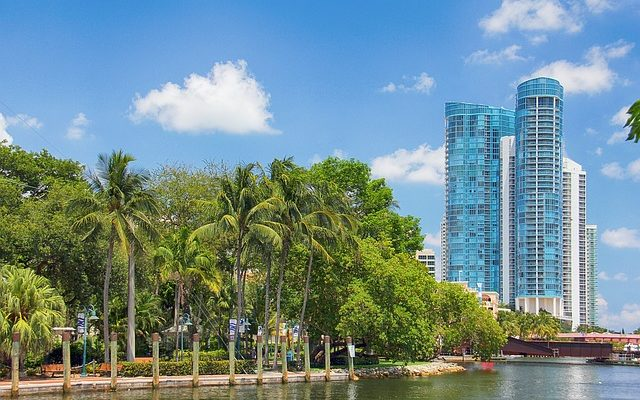 A perfect balance of palm trees and buildings, nature and urban, is one reason why people move to Fort Lauderdale.