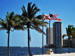 A view of Miami  which makes buying your first apartment in Miami an excellent option.