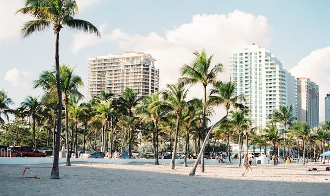 Sand and palm trees in Miami, with buildings in the background.