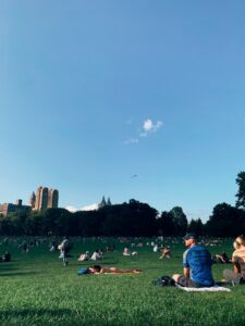 people sitting on the grass and relaxing